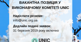 A vacant member position in the UNIC Executive Committee